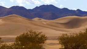 Big sand dunes in the desert of Nevada. Travel photography stock footage