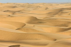 Big sand dunes panorama. Desert or beach sand textured background. Royalty Free Stock Photo