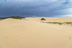Big sand dunes in woody cape section of Addo Elephant Park Royalty Free Stock Photography