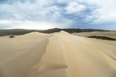 Big sand dunes in woody cape section of Addo Elephant Park Stock Photo