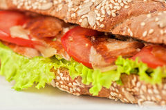 Big sandwich Royalty Free Stock Images