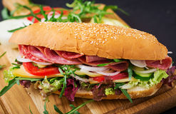Big sandwich with ham, salami, tomato, cucumber. And herbs royalty free stock images