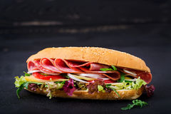 Big sandwich with ham, salami, tomato, cucumber. And herbs stock image