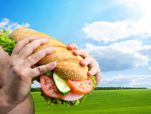 Big sandwich in hands Stock Photography