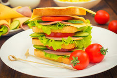 Big sandwich, meat, lettuce, cheese and vegetables on toasted. Wooden background. Close-up Royalty Free Stock Image