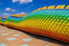 The Big scaly Naga snake Royalty Free Stock Photography