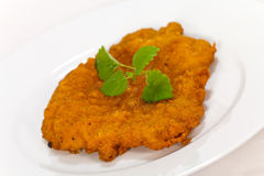 Big Schnitzel-Escalope with Salad Royalty Free Stock Photo