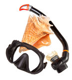 Big sea shell and equipment for diving (snorkel) Stock Images