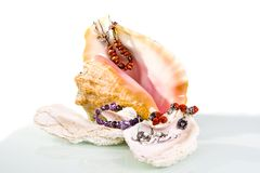 Big sea shell with jewelery still life Stock Image