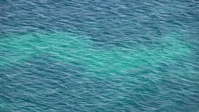The Big Sea Water. Video stock footage