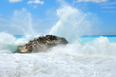 Big sea wave breaking on the shore rocks Stock Photography
