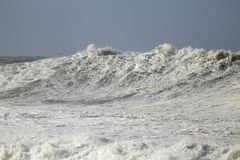 Sunny big stormy sea wave Royalty Free Stock Photography