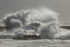 Big sea waves splash Royalty Free Stock Photos