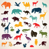 Big set of african and european animals silhouettes in cartoon s Royalty Free Stock Photography