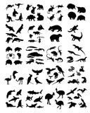 Big set of australian animals silhouettes. Royalty Free Stock Images