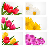 Big set of banners with spring and summer flowers Stock Image