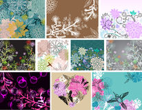 Big set of beautiful floral background Stock Photos