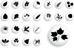 Big set buttons - 1_B. Leaves Stock Photo
