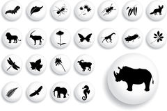 Big set buttons - 16_B. Nature vector illustration