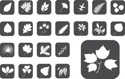 Big Set Buttons - 1_Z. Leaves Royalty Free Stock Photo