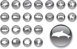 Big set buttons - 20_A. Fish. Big set  buttons - 20_A. Fish. Fish and other marine animals for your design Royalty Free Stock Photos