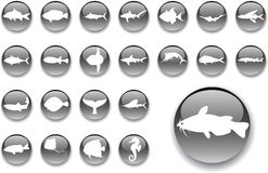 Big set buttons - 4_A. Fish. Set of 23 round vector buttons for web Royalty Free Stock Photo