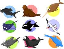 Big set of cartoon marine animals.vector. Big set of cartoon marine animals, vector illustration picture Royalty Free Stock Image