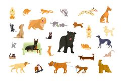 Big set of Cats and dogs vector illustration