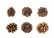 Big set of cones isolated on white Royalty Free Stock Photo