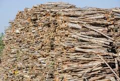 Big set of cut wood Stock Image