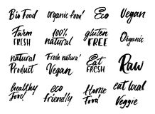 Big set of eco food labels and inscriptions isolated on white ba. Ckground background. Modern brush lettering eco food tags. Healthy food inscriptions for Royalty Free Stock Photography