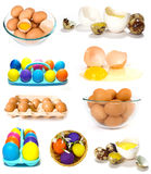 Big set of eggs Royalty Free Stock Photography
