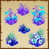Big set fancy blue fairy flowers, six items Stock Photography
