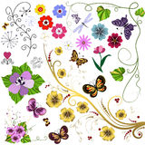 Big set flowers and  butterflies Stock Images