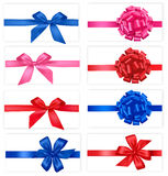 Big set of gift bows with ribbons. Vector Stock Photo