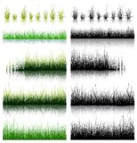 Big Set of Grass isolated on white background. Royalty Free Stock Photos
