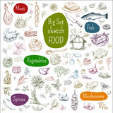 Big set of hand drawn food. Big set of color sketch drawn. Food, white background. Meat, fish, vegetables, mushrooms, spices. Hand drawn vector illustration Royalty Free Stock Photos