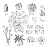 Big set of hand drawn houseplants monstera. Bamboo, cactus, fern and other doodle houseplants in flowerpots Royalty Free Stock Images