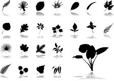 Big set icons - 17. Leaves Stock Photography