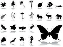 Big set icons - 5. Nature Stock Photos