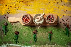 Big set of Indian spices and herbs on a wooden board. Flat lay. Copy space royalty free stock photography