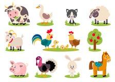 Big set isolated farm birds, animals Royalty Free Stock Images