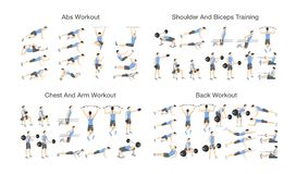 Big set of people doing exercises in the gym. Workout with dumbbell for different groups of muscles. Upper body training for arm and ABS, back and chest vector illustration