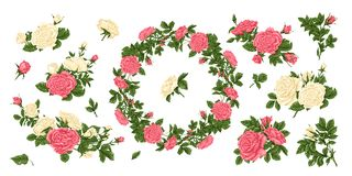 Big set of pink and white roses, and a wreath of flowers. vector illustration