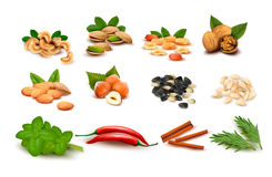Big set of ripe nuts and seeds and spices Stock Image