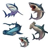 Big set of sharks isolated realistic illustration. vector illustration