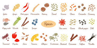 Big set of simple flat culinary spices. Silhouettes Stock Photo