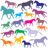 Big Set vector colorful trotting and galloping horses silhouette Stock Photography