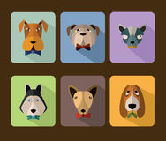 Big set of vector icons of dogs. Royalty Free Stock Images