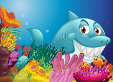 A big shark near the coral reefs. Illustration of a big shark near the coral reefs Royalty Free Stock Image